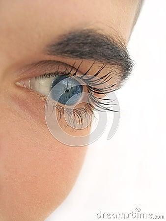 Free Blue Eye Royalty Free Stock Photos - 173828