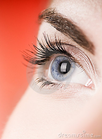 Free Blue Eye Stock Photography - 4655022