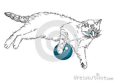Blue-eyed cat.