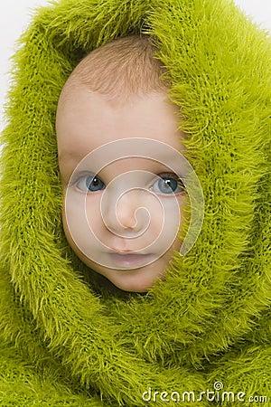 Free Blue Eyed In Green III Stock Photo - 2039360