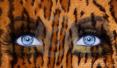 Blue fashion makeup eyes leopard