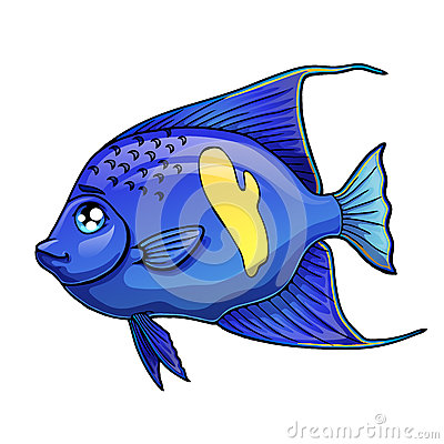 Free Blue Fish Arabian Angel On White Royalty Free Stock Image - 85751186