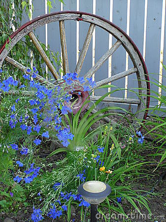 Free Blue Flowers & Wagon Wheel Stock Image - 597211