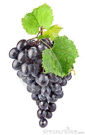 Free Blue Fresh Grape With Green Leaves Royalty Free Stock Images - 21812979