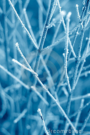 Free Blue Frost Texture Stock Images - 384574