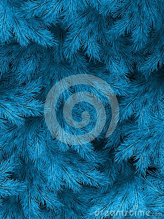 Blue green branches of a fur-tree, spruce or pine with copyspace. EPS 10 Vector Illustration