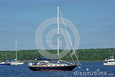 Blue hulled sailboat at mooring