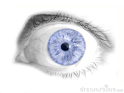 Blue Human Eye Isolated Photo