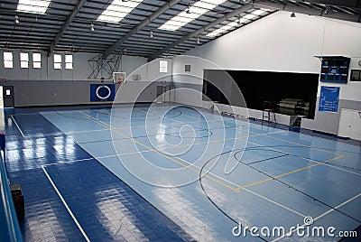Blue Indoor Gymnasium