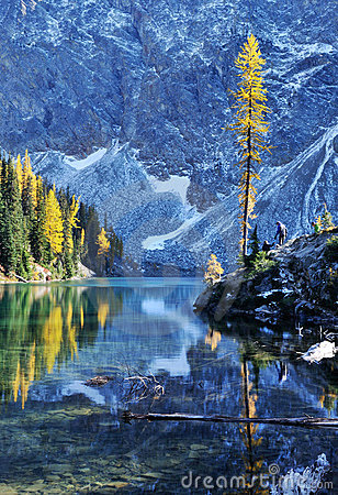 Free Blue Lake With Golden Larch Tree In Autumn Stock Image - 11338491