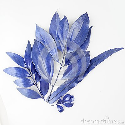 Free Blue Leaf Design Elements. Decoration Elements For Invitation, Wedding Cards, Valentines Day, Greeting Cards. Isolated On White Ba Stock Photos - 103008223