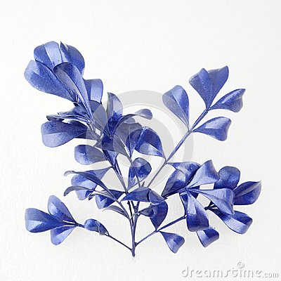 Free Blue Leaf Design Elements. Decoration Elements For Invitation, Wedding Cards, Valentines Day, Greeting Cards. Isolated On White Ba Stock Photos - 103008253