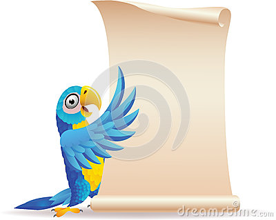 Blue macaw with scroll paper