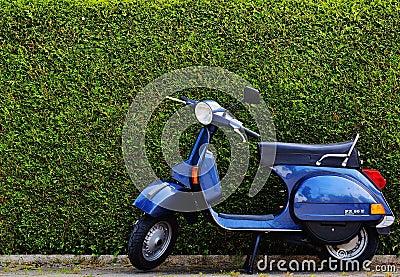 Blue Moped By Green Bush At Roadside Free Public Domain Cc0 Image