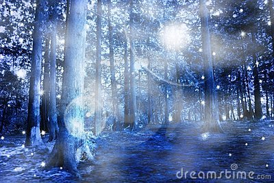 Blue mystic forest