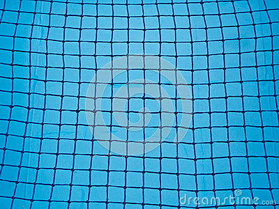 Blue Net  Background