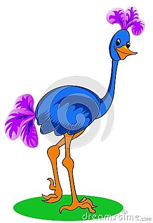 Blue ostrich.