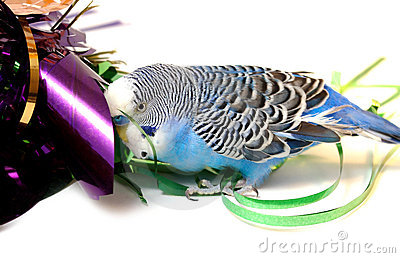 Blue parrot and tinsel from foil.