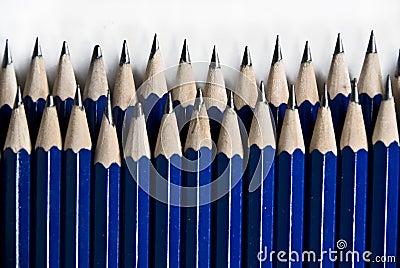Blue Pencils In Row