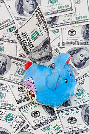 Blue piggy bank with dollars