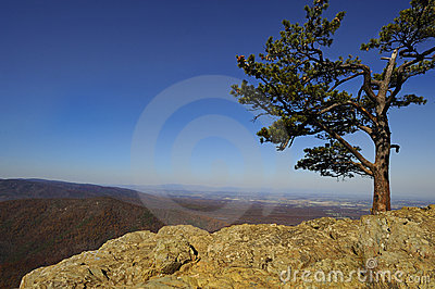 Blue Ridge Mountains Vista From Ravens Roost