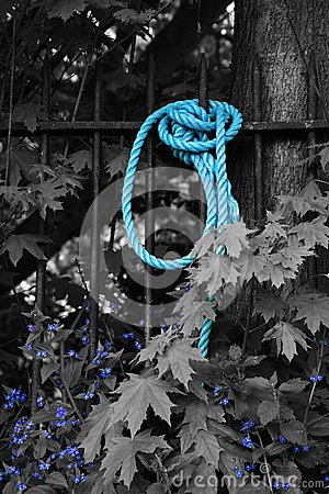 Blue Rope and Flowers in Black and White