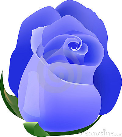 Free Blue Rose Royalty Free Stock Photography - 7761117