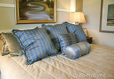 Blue Satin Pillows