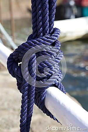 Blue Sea knot