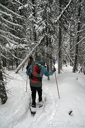 Blue shirt, snowshoe hikers