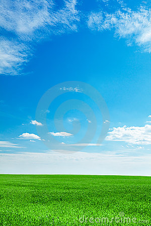 Free Blue Sky And Field Of Green Grass Stock Photography - 14930312