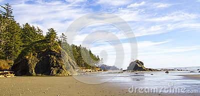 Shoreline at Low Tide Second Beach Olympic National Park