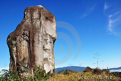 Blue sky at Doi Pha-tang