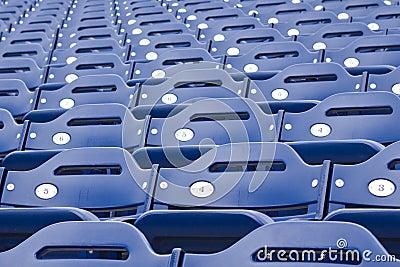 Blue Stadium Seating