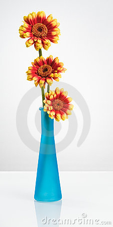 Free Blue Vase With Gerbera Flowers Royalty Free Stock Images - 22658139