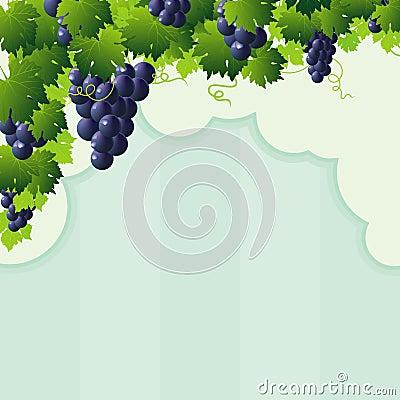 Free Blue Vine Grape Cutout Frame Royalty Free Stock Image - 26577486