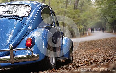 Blue Volkswagen Beetle Vintage Car Surrounded By Dry Leaves During Daytime Free Public Domain Cc0 Image