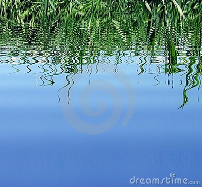 Blue water and reflect
