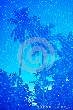 Blue water of resort swimming pool with palm trees reflection