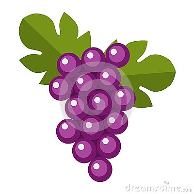 Free Blue Wet Isabella Grapes Bunch Vector. Stock Images - 82799834