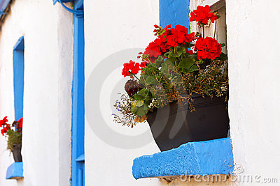 Blue window cottage house