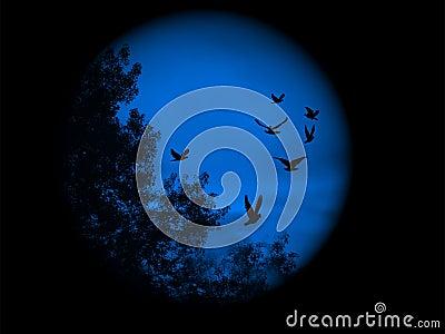 Blue world vision
