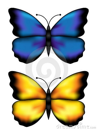 Blue and yellow butterflys