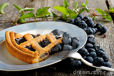 Blueberries cake on dish