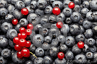 Blueberries And Red Currant Berries Stock Photos - Image: 25884643