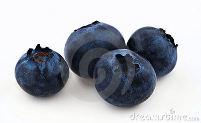 Blueberries on white