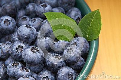 Blueberries from the wood in a bowl