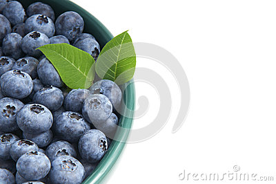 Blueberries from the wood in a bowl isolated