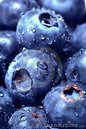 Free Blueberry Royalty Free Stock Image - 18898716