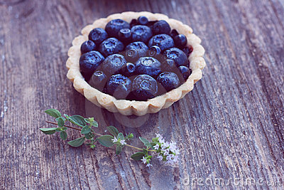 Blueberry and blackcurrant pie on wood background